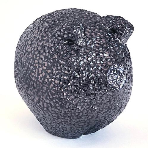 Small Black Pig 4