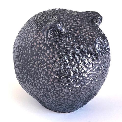 Small Black Pig 1