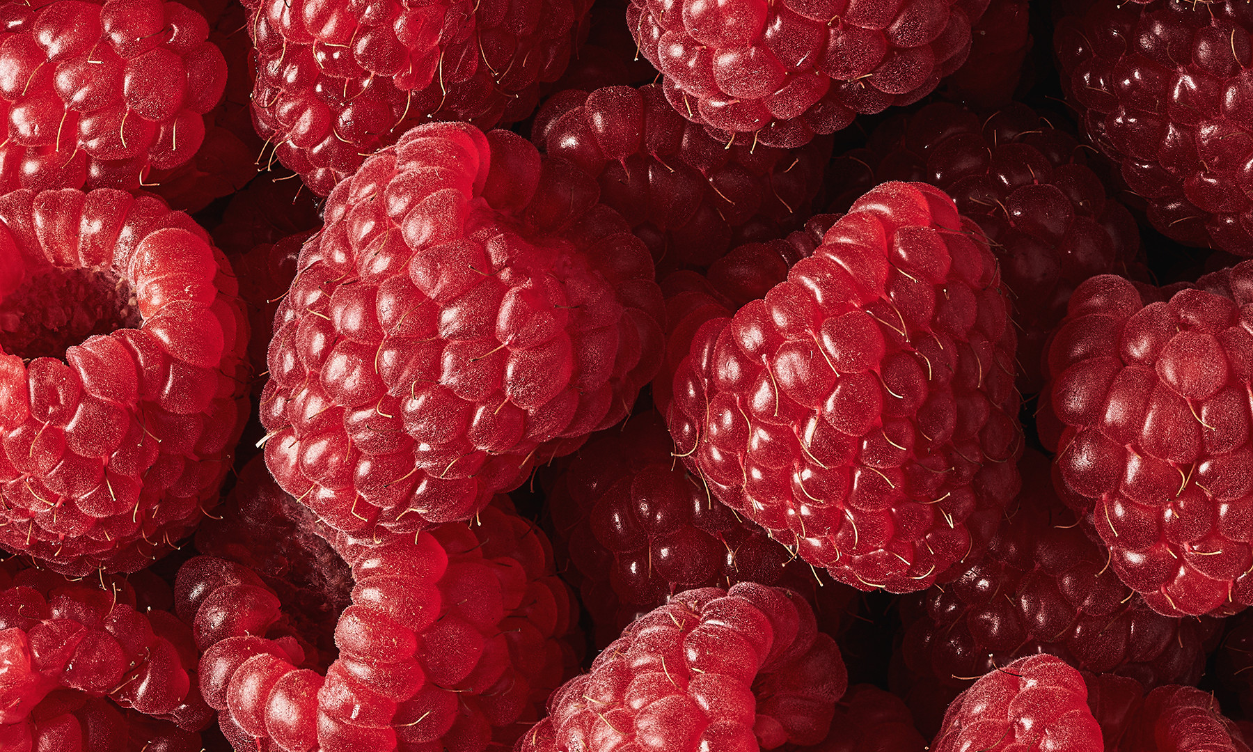 NED GIBBS - RASPBERRIES