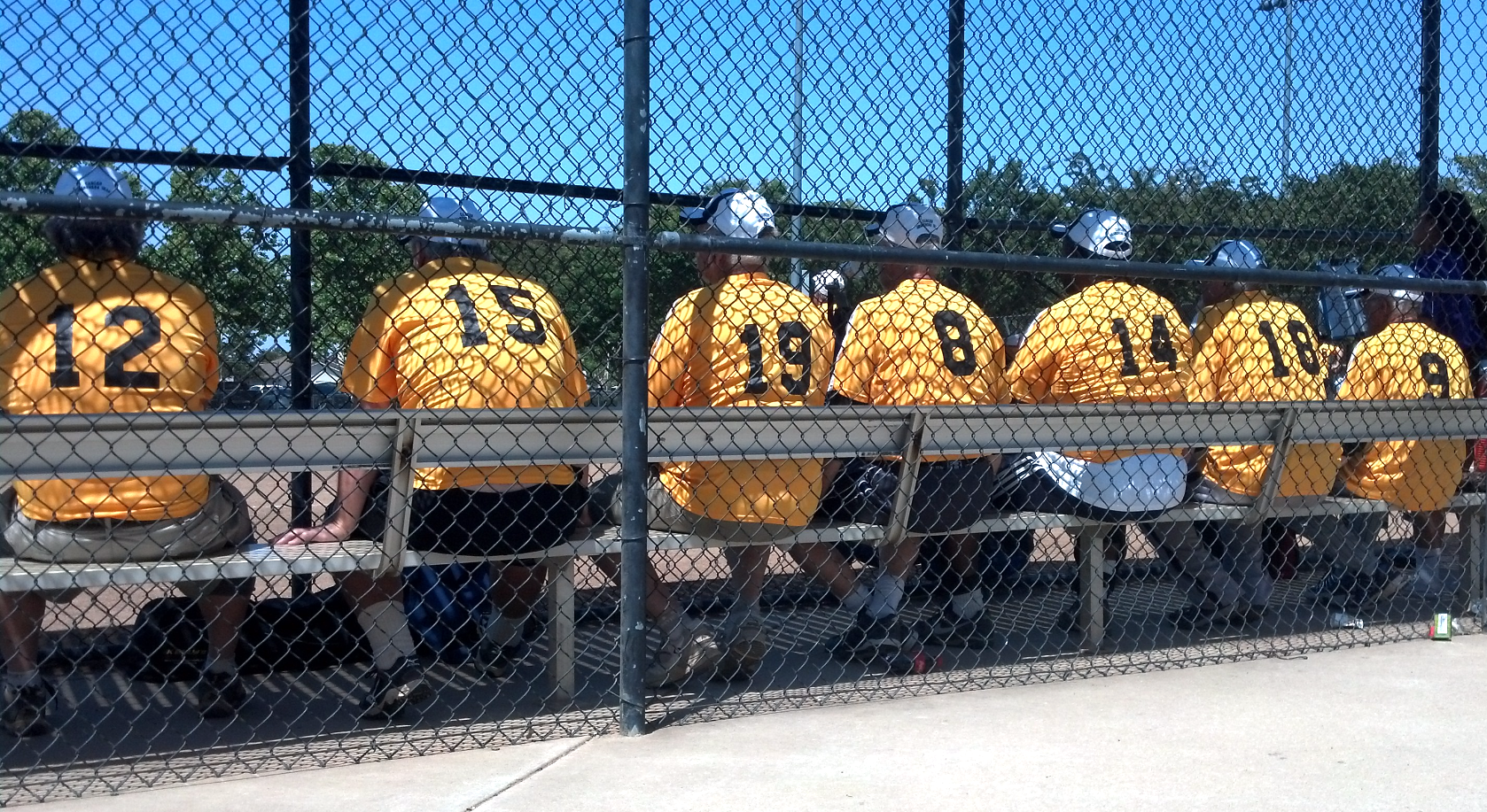 CAN-Sirs Bench 2015 Elk Grove_edited.jpg