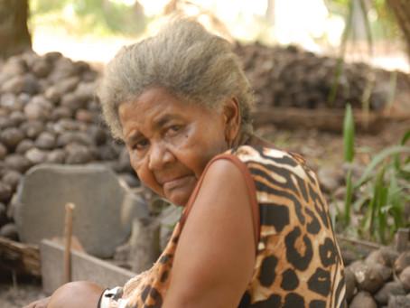 Histórias do quilombo Ilha de São Vicente no rio Araguaia
