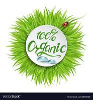 100-organic-logo-design-vector-18333368.