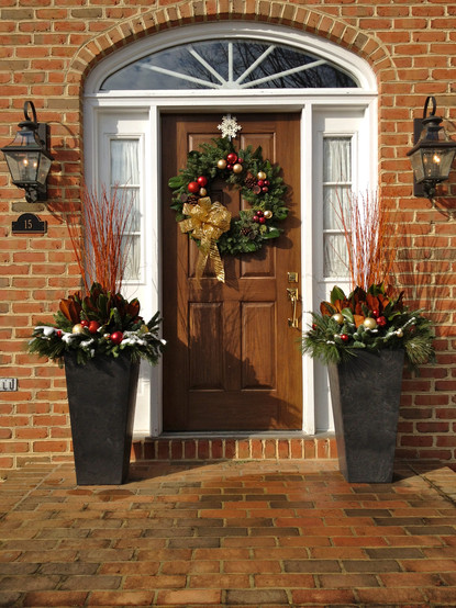 tall potted plants decorating doorway