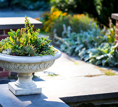 maintaining container gardens