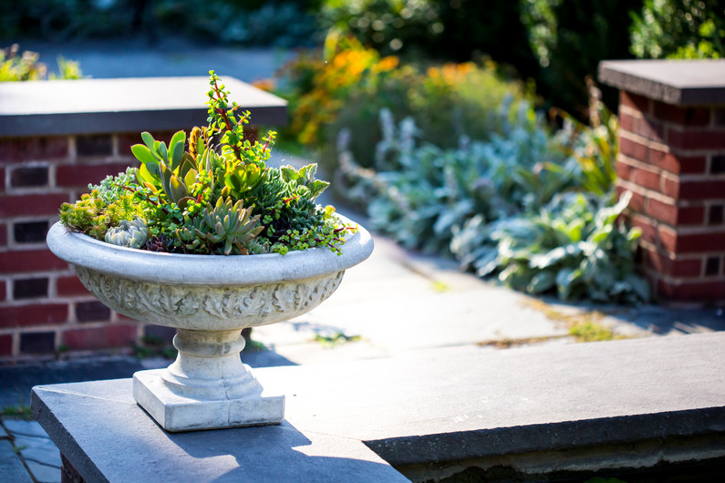 bird bath style plant container with greens for summer