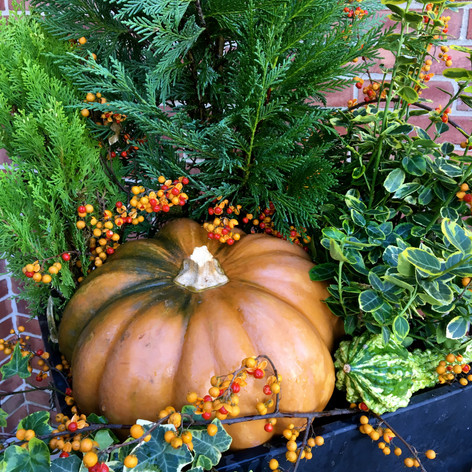fall pumpkin and plant decoration lancaster