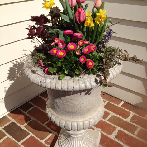 spring container gardens - tall potted plants for spring