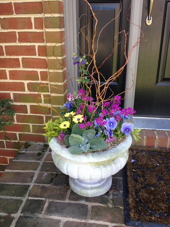 spring container garden - short potted plant decor