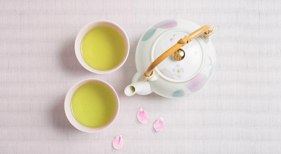 momotea, toronto, Japanese, tea, matcha