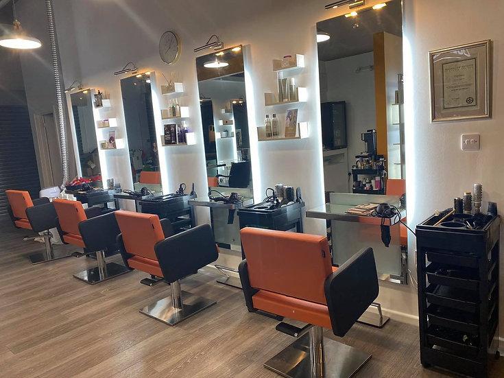 Our Salon 1