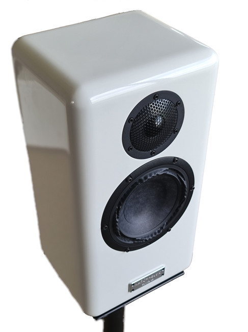 single speaker.jpg