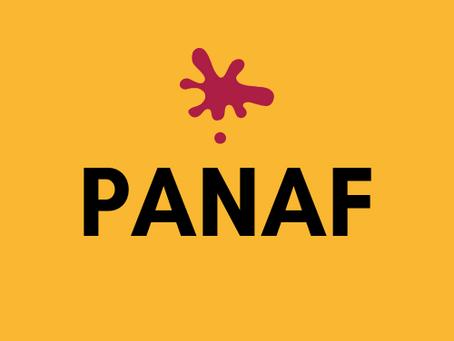 Ouverture du Panaf! Panaf Opening!