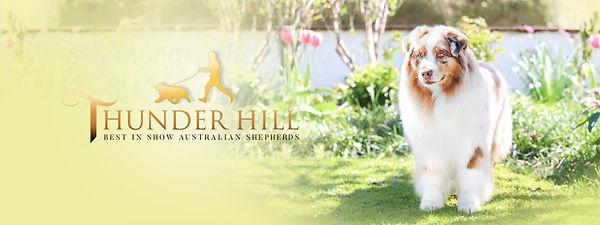 thunderhill banner final.jpg