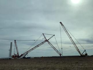 5-crane.jpg