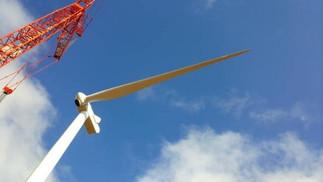 11-crane.jpg