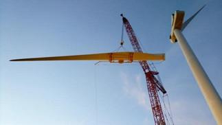 10-crane.jpg
