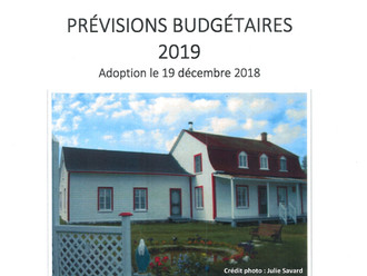 Prévisions budgétaires 2019