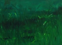 Trippy grass