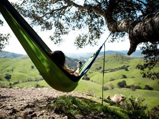 14 Reasons to Drive to San Luis Obispo