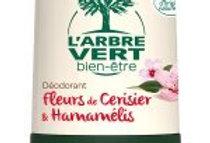 Déodorant Fleurs de Cerisier & Hamamélis 50 ml, l'Arbre Vert