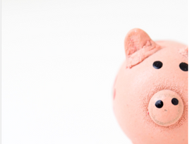 Money: How much money will you budget for your marketing efforts?