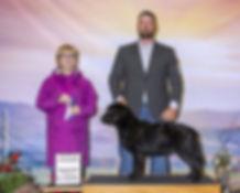 2020-03-15-Sun-Shasta_lab-rwb-scaled.jpg