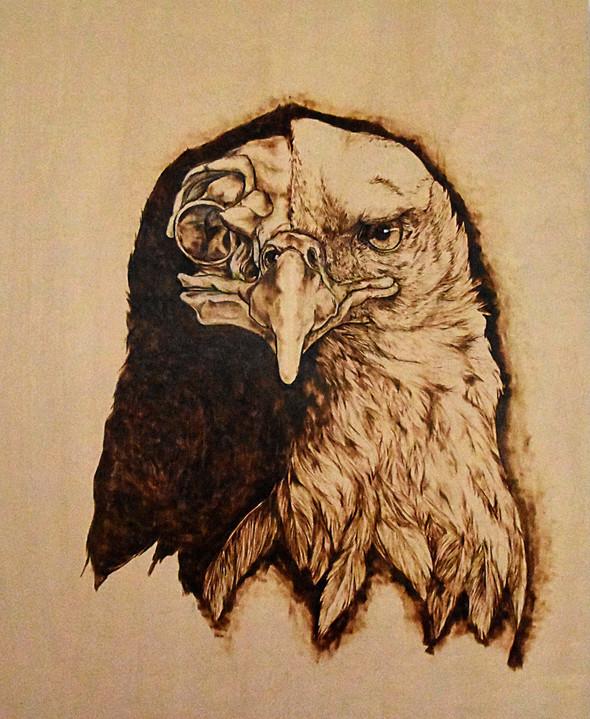 Skulls & Souls: Bald Eagle | Other