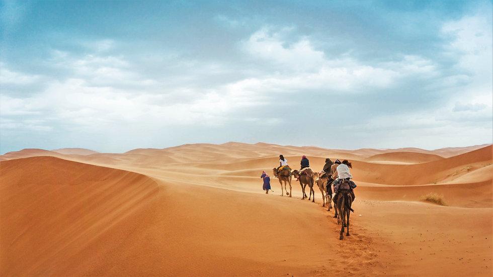 CRF Morocco Sahara 8.jpg