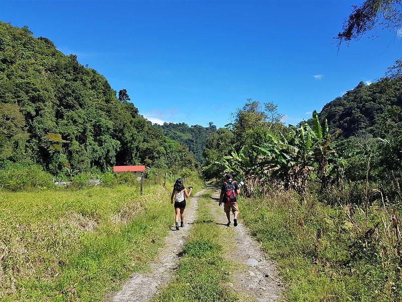 Panama Sendero Los Quetzales (8).jpg