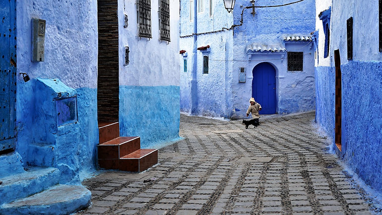 There isn't a single place in Morocco where you can't find a furry feline friend. Every city has its own residential variety, with unique set of temperament and looks. In Chefchaouen, a city that's tidier than most, they tend to be better fed, so are chubbier. The blue city makes these cats seem like fantastical actors in an Alice-in-Wonderland story, only bluer and dreamier. As you turn around the next street corner there's always something to surprise you; as a photographer whose heart jumps wildly at the sight of a curious composition as a toddler's would at the sight of candy, I could barely contain my excitement around the city. You really need to slow down here and rest a while as you soak in the calm blue of the surroundings. You might see sights such as a man trying to make a few dirhams letting you take selfies with his pet peacocks, but you'll also find the more orthodox sellers of souvenirs, although the intense pressure of most Moroccan towns is largely absent here.