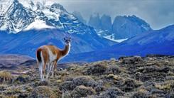 Chile   Jun 2016