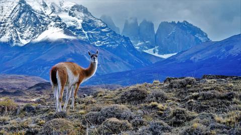 Chile | Jun 2016