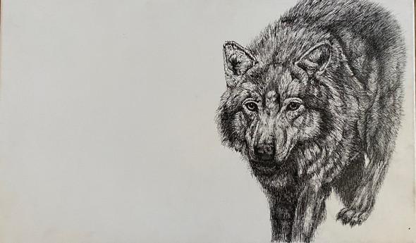 Mr. W Lonewolf | Ink