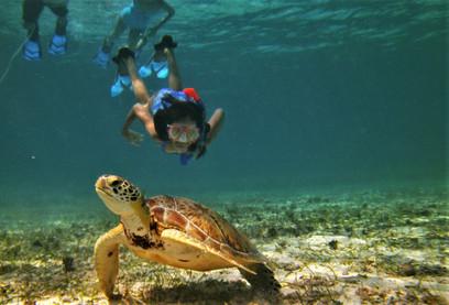 Belize 3.jpg