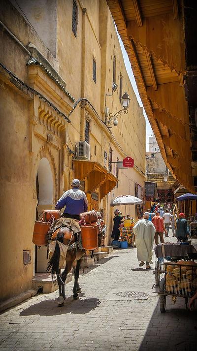 CRF Morocco Fes (1).jpg