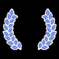 CRF Prize Ribbon Badge (3).png