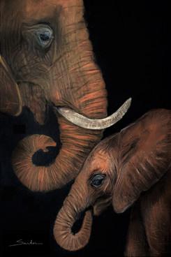 """Silent Whisper: African Elephant & Calf"""
