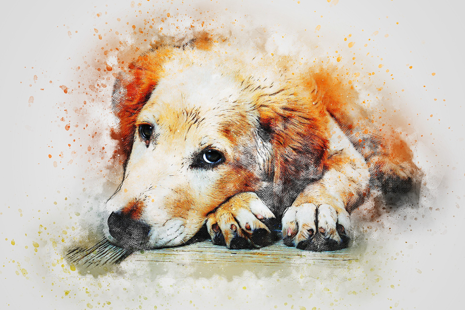 CRF Animals Painting (15).jpg