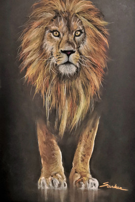 """""""The King's Glare: Lion"""""""
