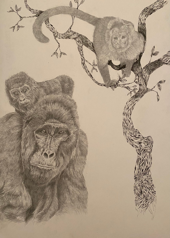 Monkey business Mary, Sam and Vincent | Ink
