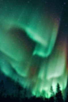 Kids traveling to Iceland will admire the wild beauty of the colorful aurora borealis against a starry sky