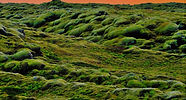 Green mossy lava fields against a red sky as twilight approaches near Reykjavik, Iceland