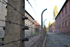 Barbed And Twisted, Poland