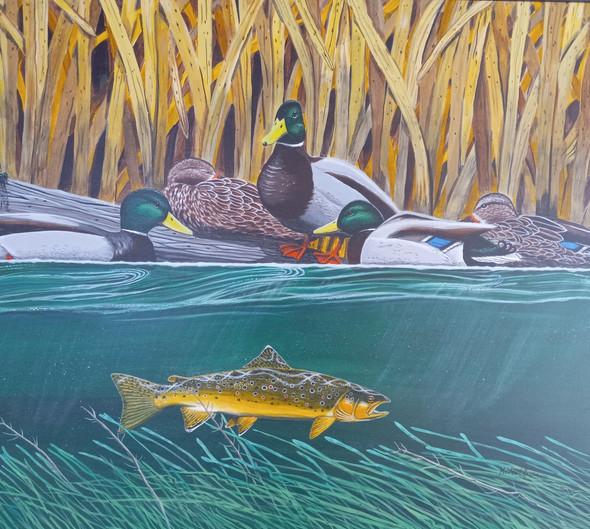 Mallards and Trout | Acrylic