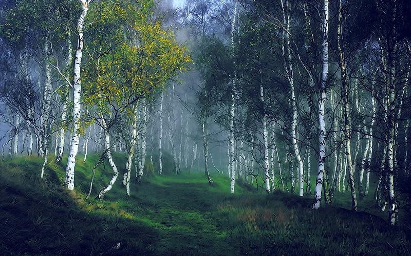 CRF Nature Painting (35).jpg