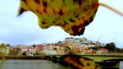 Portugal   Dec 2013