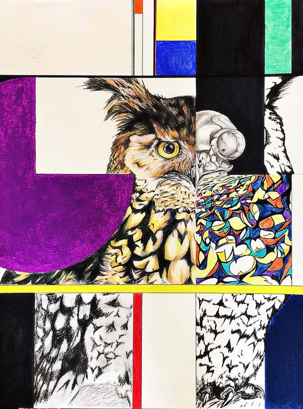 Skulls & Souls: Great Horned Owl | Mixed Media