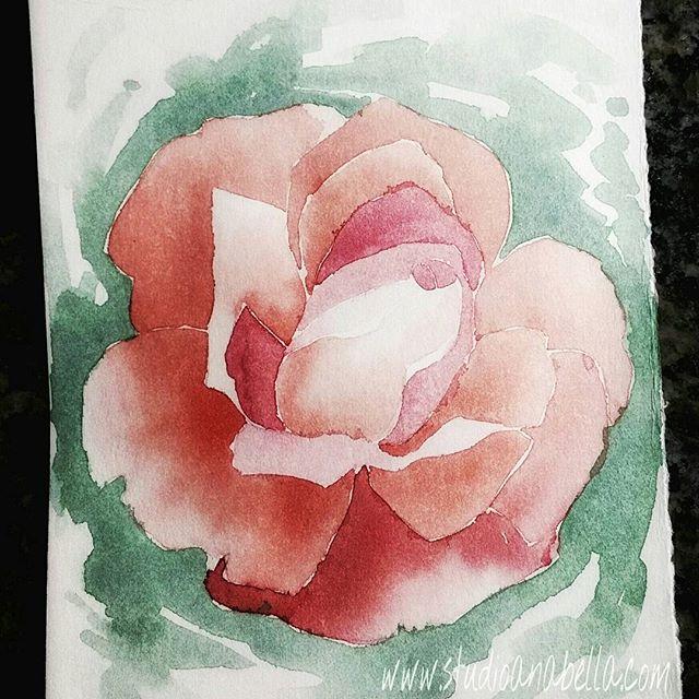 Super quick rose...