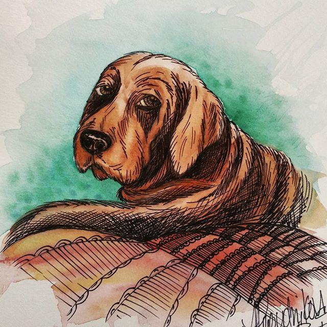🐶 my dawg💕 #bronzenewfoundland #newfie #newfoundland #dog ##sketch #inkstagram #watercolor #waterc