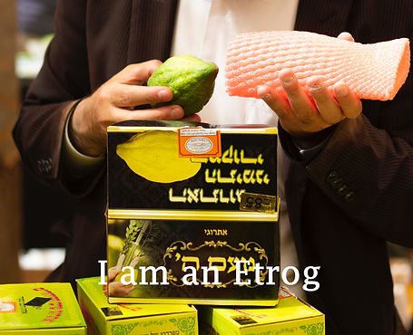 I am an etrog book cover.jpg
